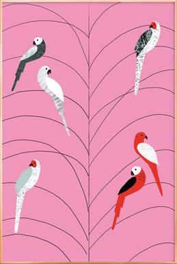 Tropicana - Birds on Branch Pink Poster in Aluminium Frame