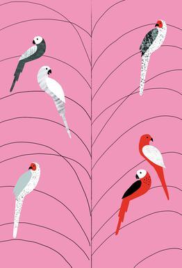 Tropicana - Birds on Branch Pink Aluminium Print