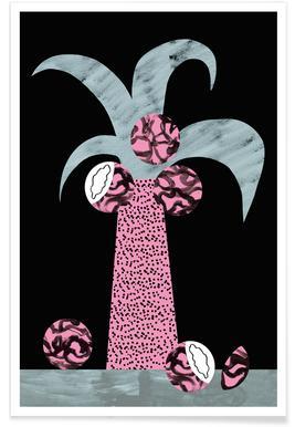 Palmier royale - Illustration affiche