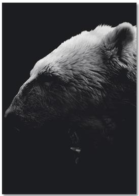 Dark Polar Bear Notebook