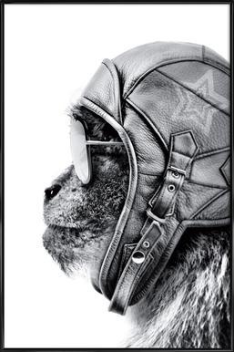 Aviator Monkey Poster in kunststof lijst