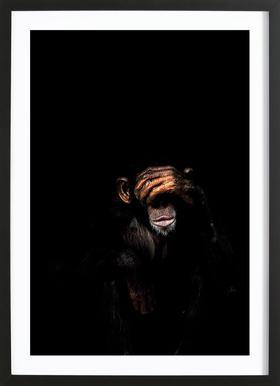Monkey See No Evil Framed Print