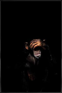 Monkey See No Evil Poster in Standard Frame