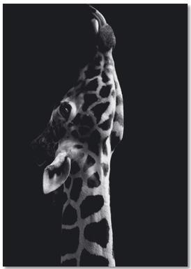 Playful Giraffe Notepad