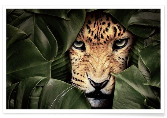 Jungle Leopard Poster