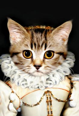 Miss Poes Acrylic Glass Print