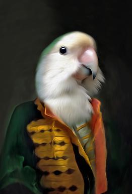Papagaai Daan alu dibond