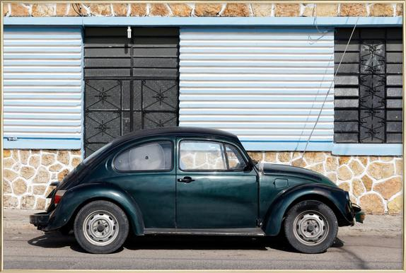 Mexican Beetle 10 as Poster in Standard Frame | JUNIQE