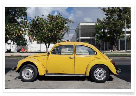 Mexican Beetle 13 affiche