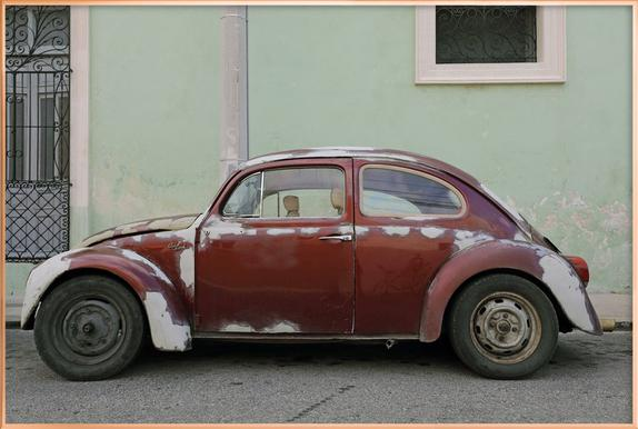 Mexican Beetle 19 as Poster in Standard Frame | JUNIQE