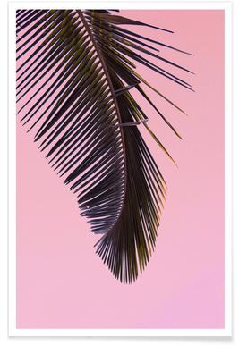Tropicana Pink by @BineArnold affiche
