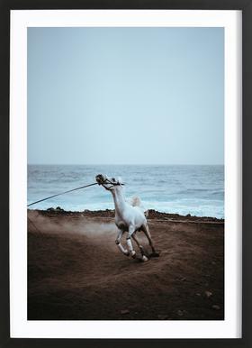 Whinnying by @miniloc Framed Print