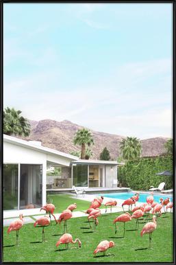 Flamingos in Palm Springs Poster im Kunststoffrahmen
