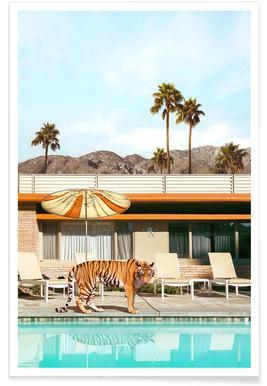 Pool Party Tiger -Poster