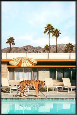 Pool Party Tiger Poster im Kunststoffrahmen