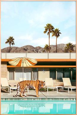 Pool Party Tiger Poster in Aluminium Frame