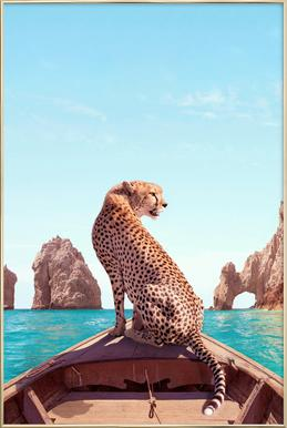 Los Cabos -Poster im Alurahmen
