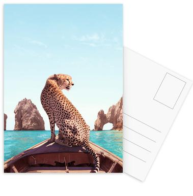 Los Cabos Postkartenset