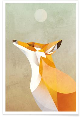 Morning Fox Poster