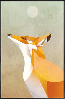 Morning Fox Affiche sous cadre standard