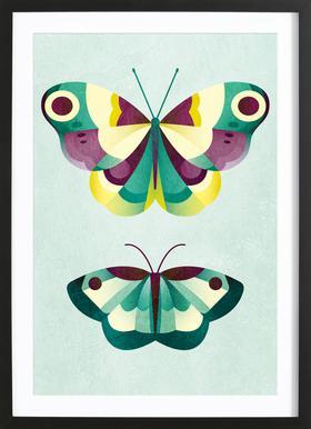 Schmetterlinge Framed Print