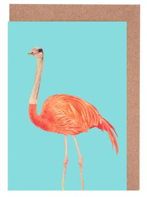 Flamingostrauss Greeting Card Set