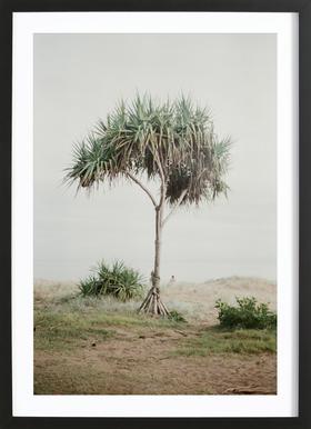 Australia Poster im Holzrahmen