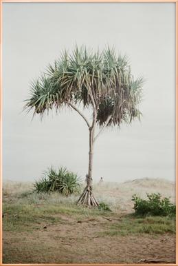 Australia Poster im Alurahmen