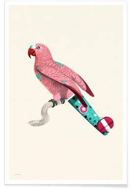 Pale Pink Parrot affiche