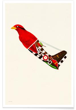 Aerofauna Red affiche
