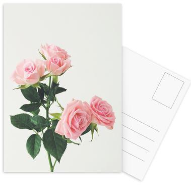 Spring Roses Postcard Set