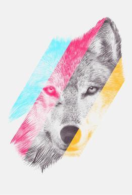Wild II acrylglas print