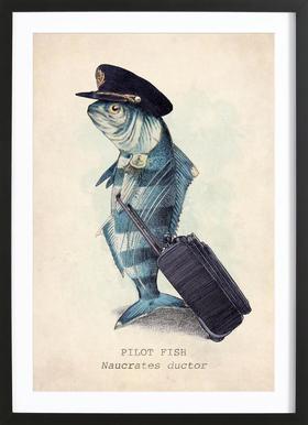 The Pilot ingelijste print