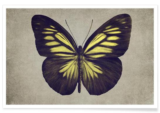 Papillon (yellow) -Poster