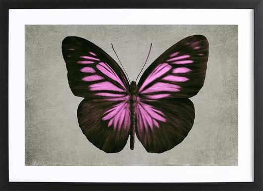 Papillon (pink) Poster im Holzrahmen