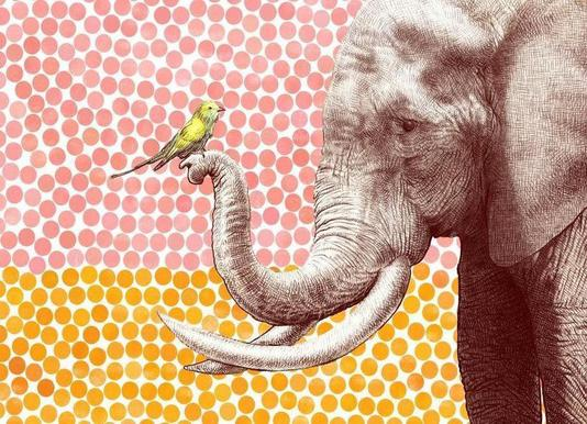 Elephant and Bird canvas doek