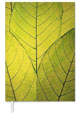 Every Leaf A Flower agenda
