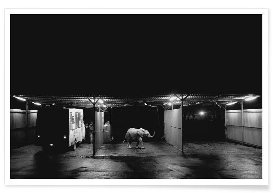 Night car wash Poster