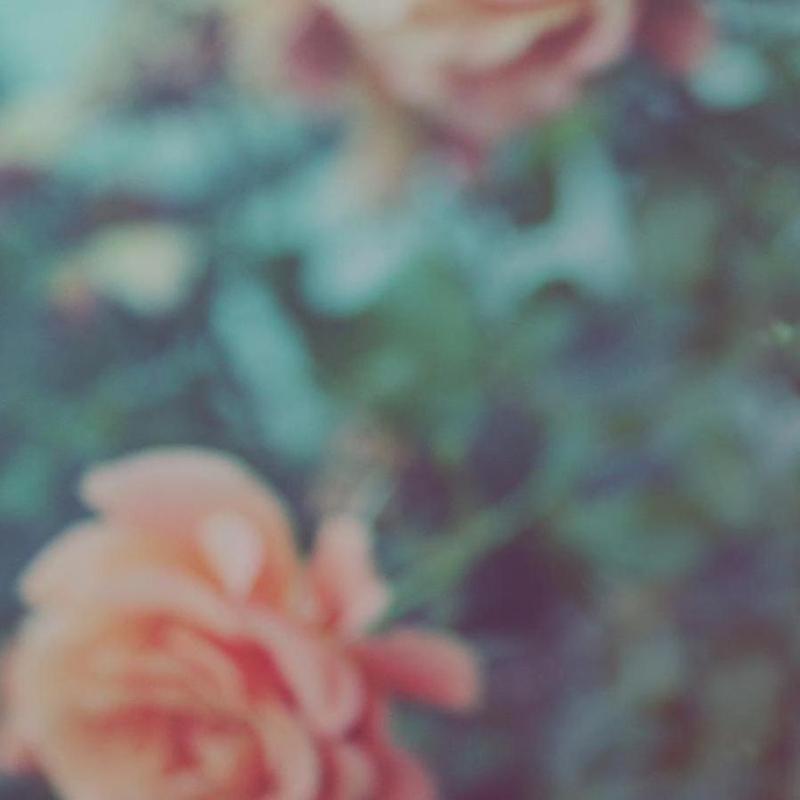 Faded Floral -Leinwandbild