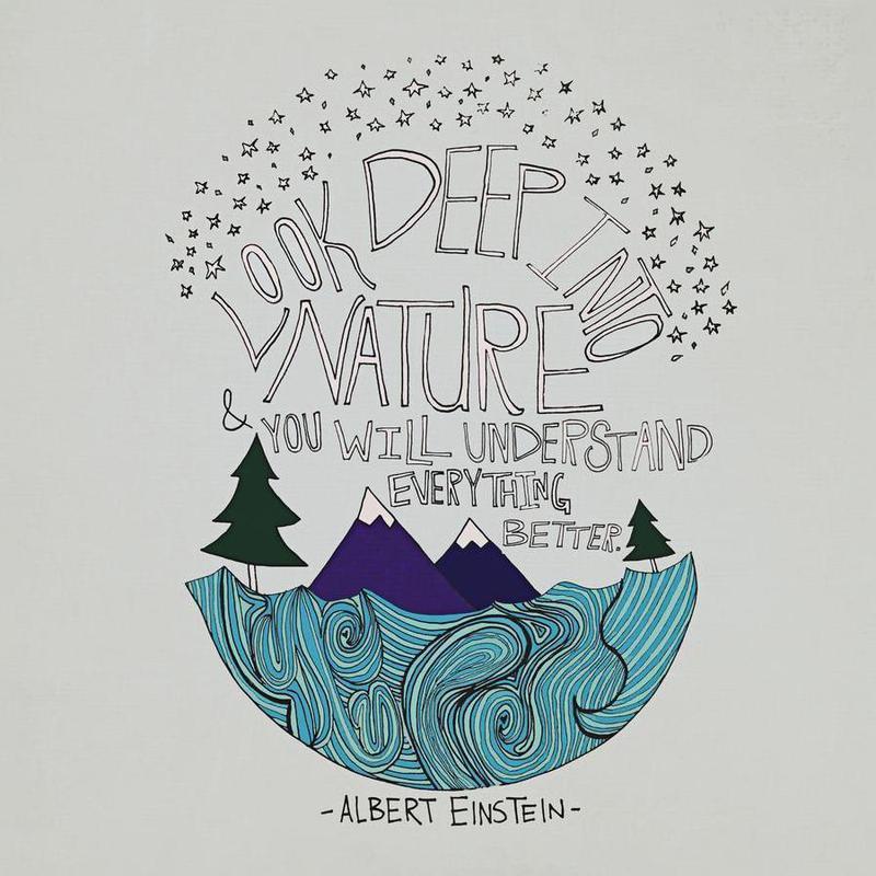 Einstein Nature -Leinwandbild