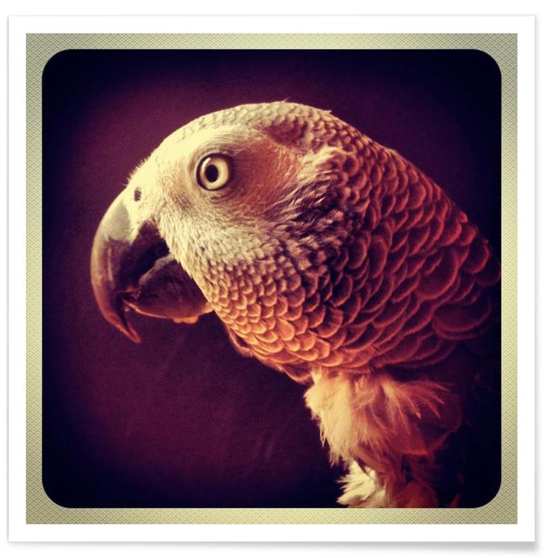 Dicky Gell Premium Poster | Dekoration > Bilder und Rahmen > Poster