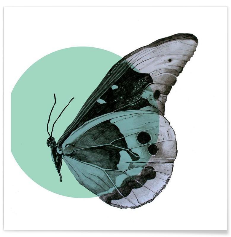Moth Drawing Poster
