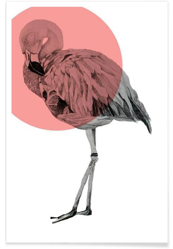 Flamant rose - Dessin affiche