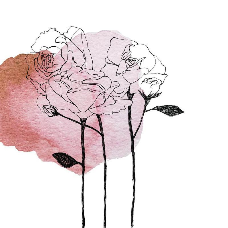 Garden Roses Aluminium Print