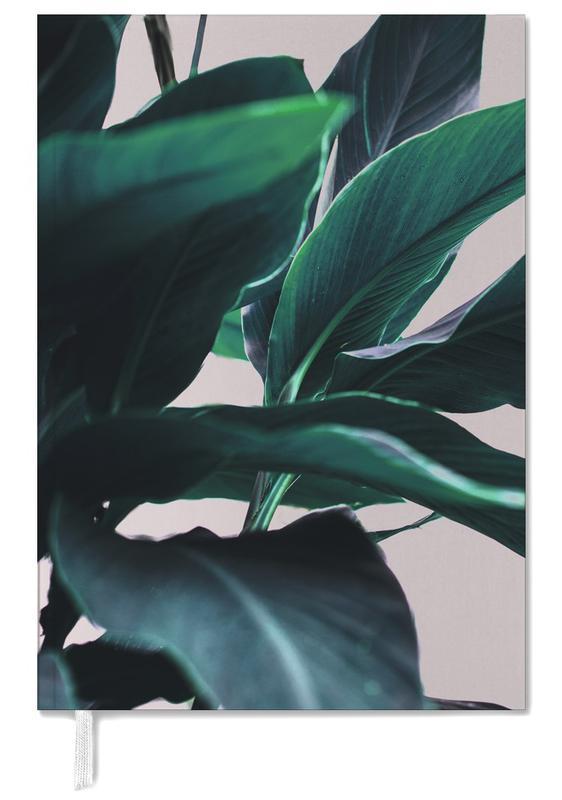 Palm Leaves 4 -Terminplaner
