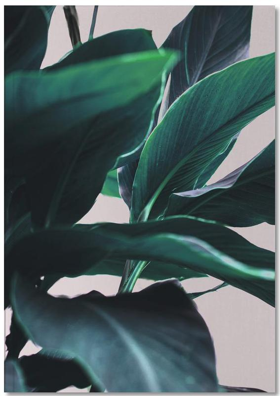 Palm Leaves 4 Notebook