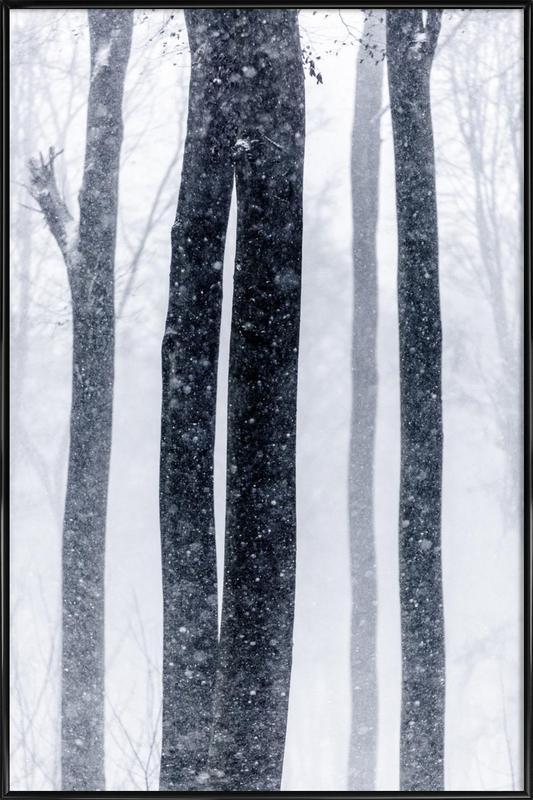 Snow Trees 2 Framed Poster