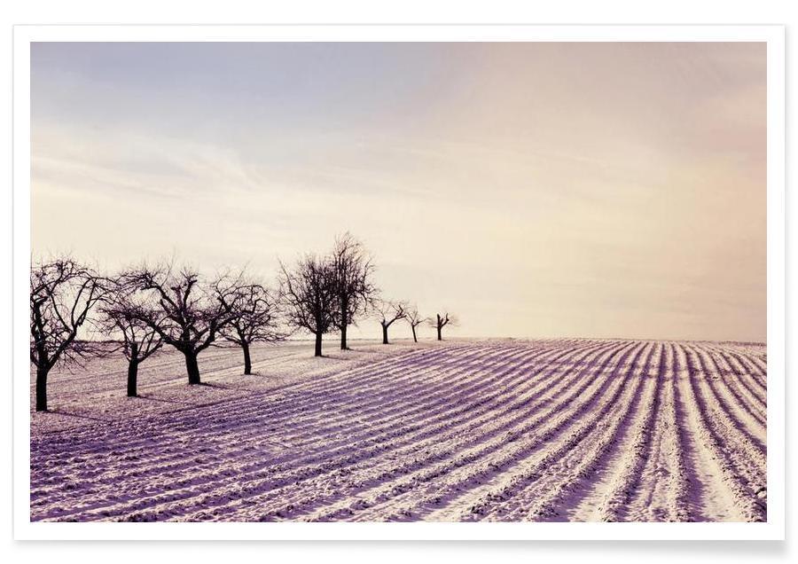 Winter Field -Poster