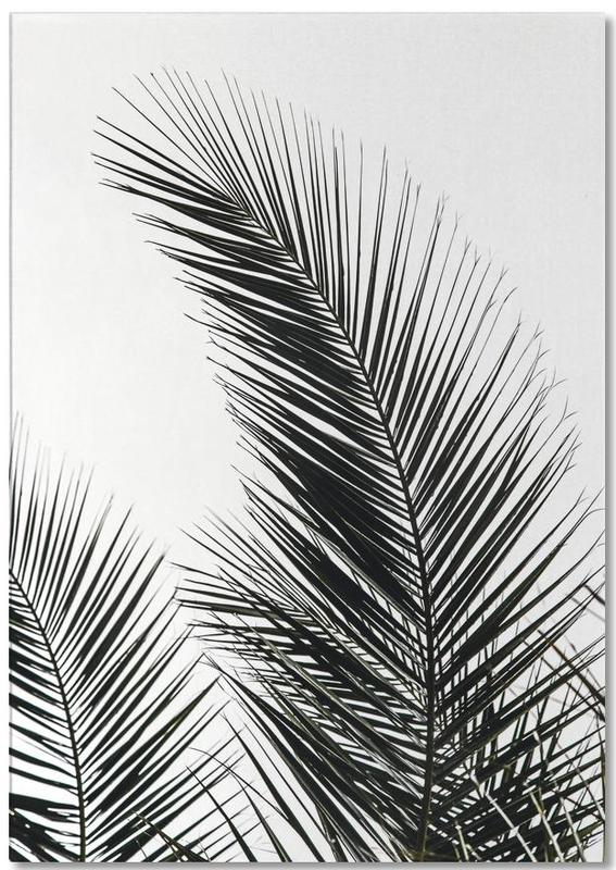 Palm Leaves 1 Notepad