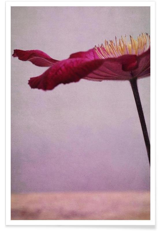 Flower Parasol poster